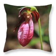 Lady Slipper At Moore State Park Close Up 2 Throw Pillow