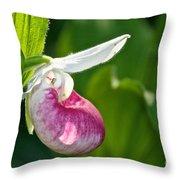 Lady Slipper Illuminated Throw Pillow