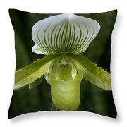 Lady Slipper Orchid Throw Pillow