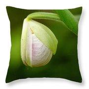 Lady Slipper Pearl Throw Pillow