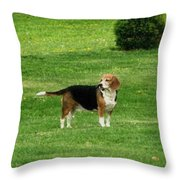 Lady7 Throw Pillow