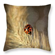Ladybird Throw Pillow by Darren Fisher