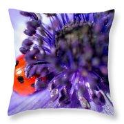 Ladybird Having A Snooze Throw Pillow