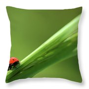 Ladybird On Green Leaf Throw Pillow