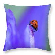 Ladybug Adventure Throw Pillow