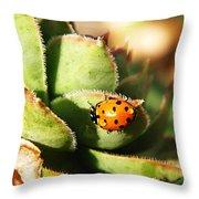 Ladybug And Chick Throw Pillow