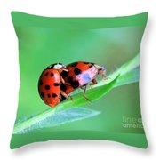 Ladybug And Gentlemanbug Throw Pillow