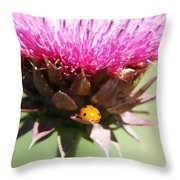 Ladybug And Thistle Throw Pillow