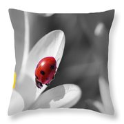 Ladybug Black And White In Colorkey Throw Pillow