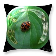 Ladybug Eating Aphids Throw Pillow