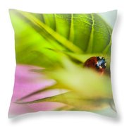 Ladybug IIi Throw Pillow