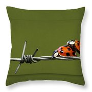 Ladybug In Love Throw Pillow