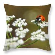 Ladybug In White Throw Pillow