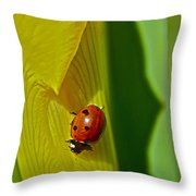 Ladybug Macro Throw Pillow