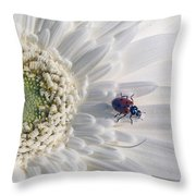 Ladybug On Daisy Petal Throw Pillow