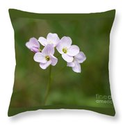 Ladys Smock Or Cuckoo Flower Throw Pillow