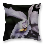 Laeliocattleya Blue Boy 1 Of 2 Throw Pillow