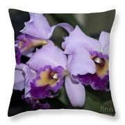 Laeliocattleya Chapala Throw Pillow