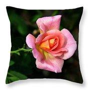 Lafter Hybrid Tea Rose 8990 Throw Pillow
