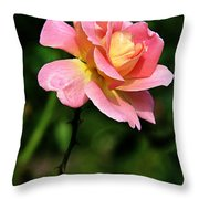 Lafter Tea Rose 8995 Throw Pillow