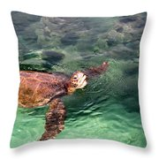 Lager Head Turtle 002 Throw Pillow