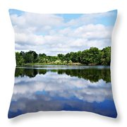 Lagoon IIi Throw Pillow