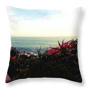 Laguna Beach Seascape Throw Pillow