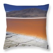 Laguna Colorada, Altiplano Bolivia Throw Pillow