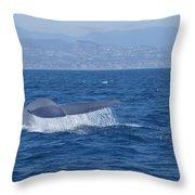 Laguna Whale Throw Pillow