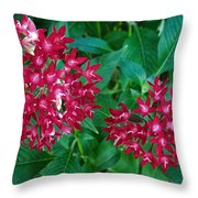 Lahaina Flowers 1 Throw Pillow