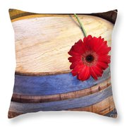Laid Aside Throw Pillow