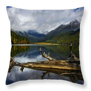 Lake 12 Throw Pillow