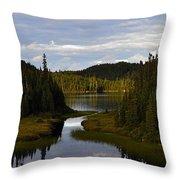 Lake 2 Throw Pillow