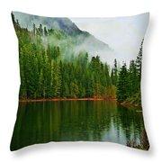 Lake 5 Throw Pillow