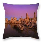 Lake 11 Throw Pillow