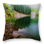 Lake 8 Throw Pillow