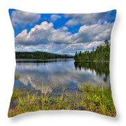 Lake Abanakee In Indian Lake New York Throw Pillow by David Patterson