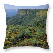 1a5801-e-lake Abert And Abert Rim V Throw Pillow
