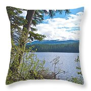 Lake Alva From National Forest Campground Site-yt Throw Pillow