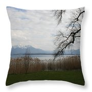 Lake And Mountains Throw Pillow