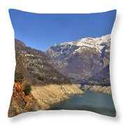 Lake And Snow-capped Mountain Throw Pillow