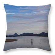 Lake Beach Throw Pillow