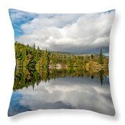 Lake Bodgynydd Throw Pillow