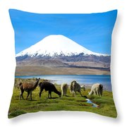 Lake Chungara Chilean Andes Throw Pillow by Kurt Van Wagner