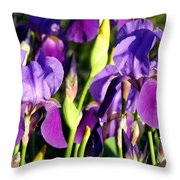 Lake Country Irises Throw Pillow