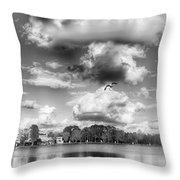 Lake De Soto Throw Pillow