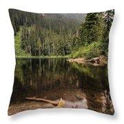 Lake Elizabeth Throw Pillow