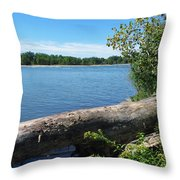 Lake Erie At Sheldon Marsh  Throw Pillow