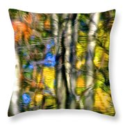 Lake Forest Throw Pillow