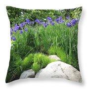 Lake George Irises Throw Pillow